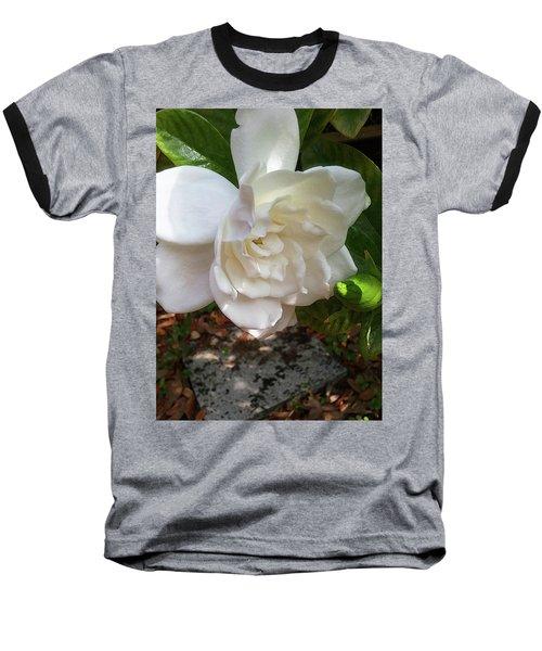 Gardenia Blossom Baseball T-Shirt by Ginny Schmidt