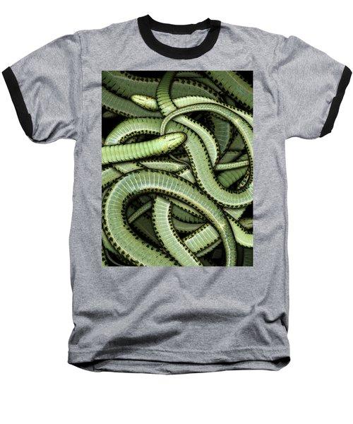 Garter Snakes Pattern Baseball T-Shirt by James Larkin