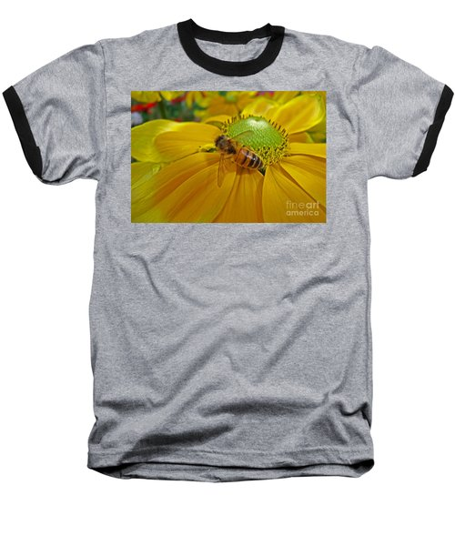 Gathering Nectar Baseball T-Shirt
