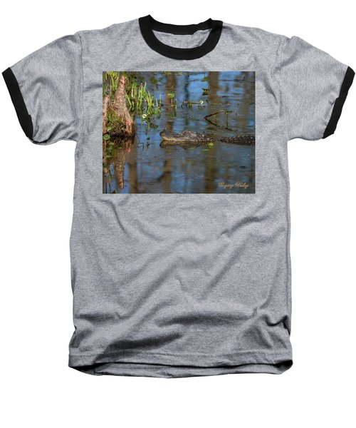 Gator In Cypress Lake 3 Baseball T-Shirt