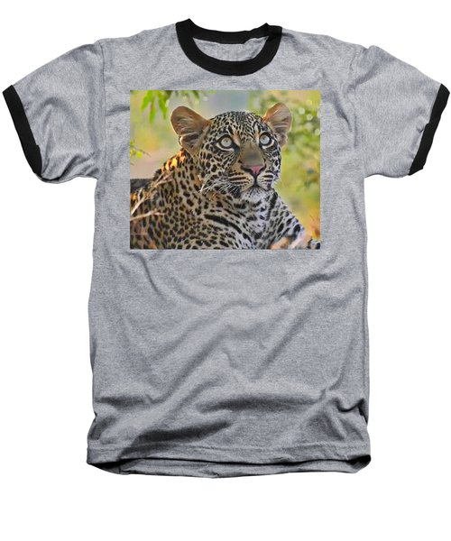 Gazing Leopard Baseball T-Shirt