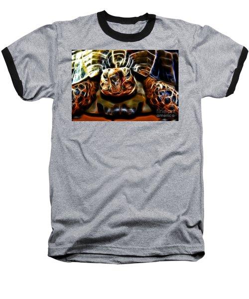 Gazing Turtle Baseball T-Shirt