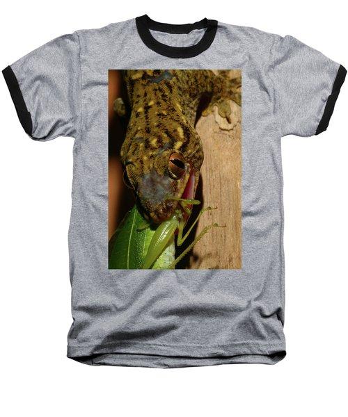 Gecko Feed Baseball T-Shirt
