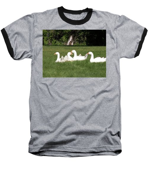 Geese In The Grass Baseball T-Shirt