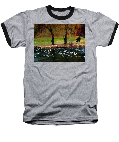 Geese Weeping Willows Baseball T-Shirt