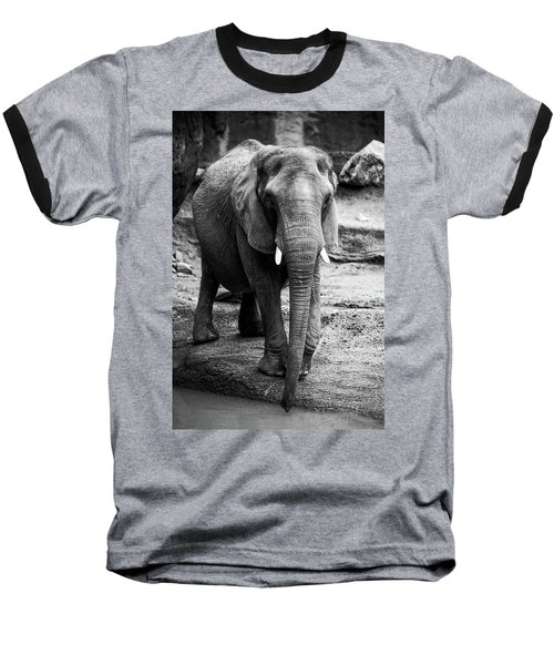 Baseball T-Shirt featuring the photograph Gentle One by Karol Livote