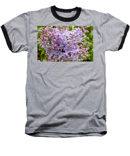 Gentle Purples Baseball T-Shirt