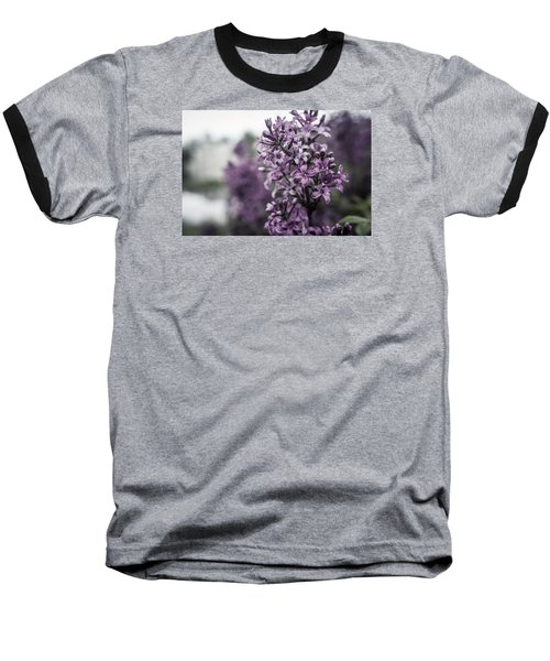 Gentle Spring Breeze Baseball T-Shirt by Miguel Winterpacht