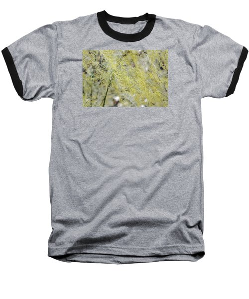 Baseball T-Shirt featuring the photograph Gentle Weeds by Deborah  Crew-Johnson