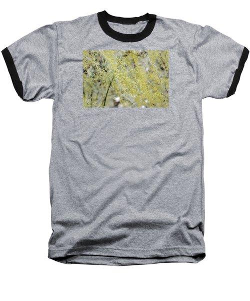 Gentle Weeds Baseball T-Shirt