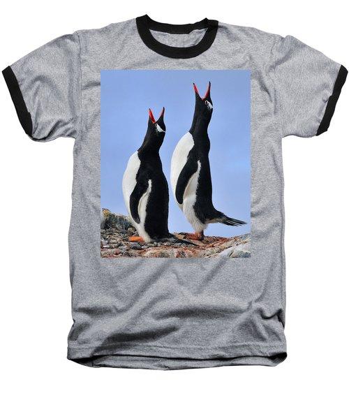 Gentoo Love Song Baseball T-Shirt