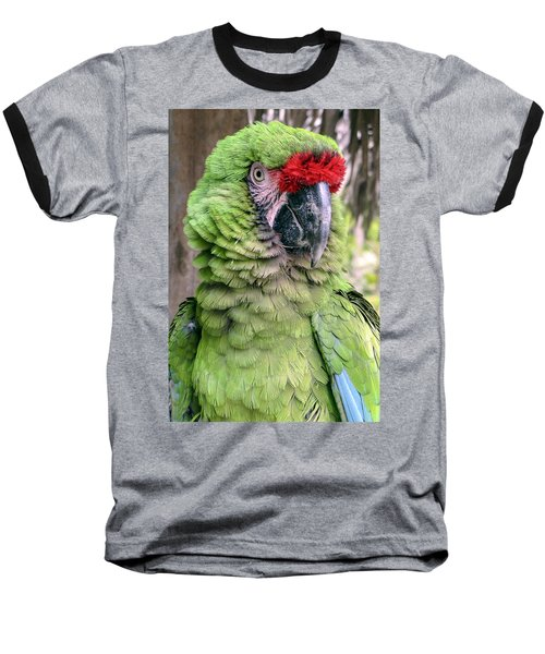 George The Parrot Baseball T-Shirt