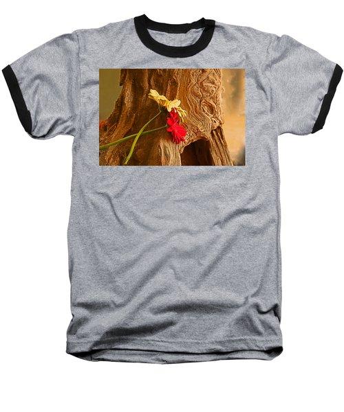 Gerber Daisy On Driftwod Baseball T-Shirt