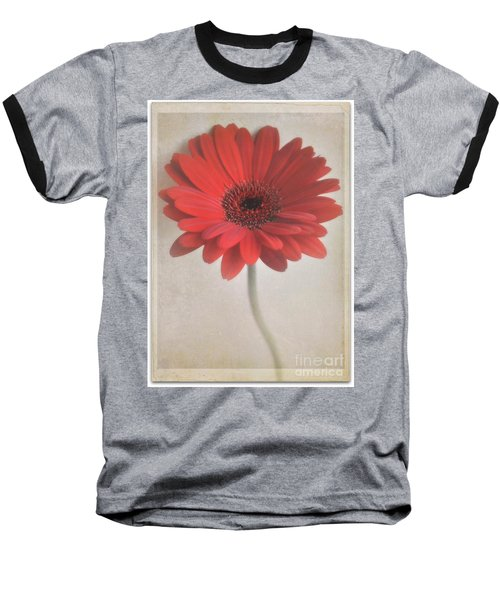 Baseball T-Shirt featuring the photograph Gerbera Daisy by Lyn Randle