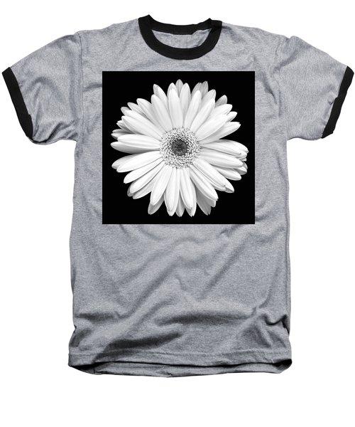 Single Gerbera Daisy Baseball T-Shirt by Marilyn Hunt