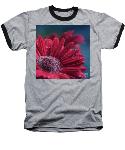 Baseball T-Shirt featuring the photograph Gerbera Red Jewel by Sharon Mau