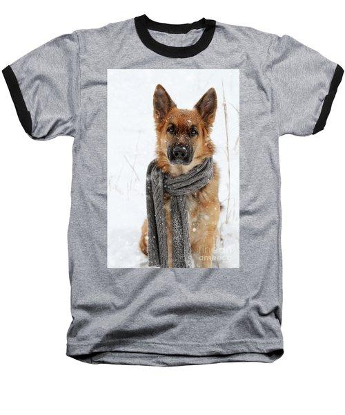German Shepherd Wearing Scarf In Snow Baseball T-Shirt