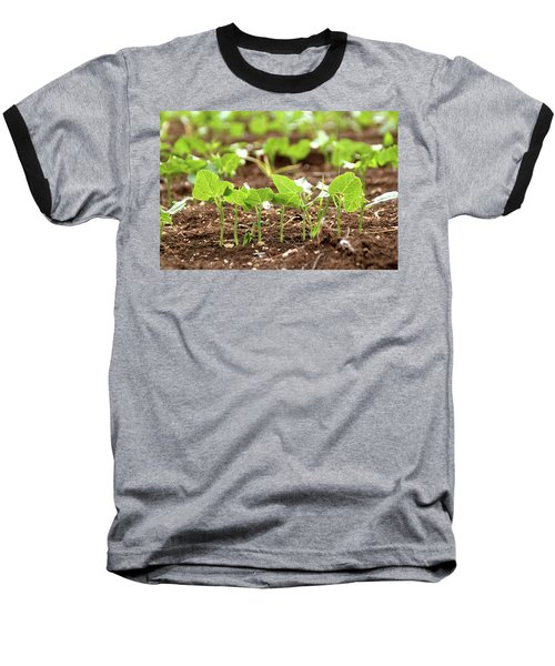 Baseball T-Shirt featuring the photograph New Sprouts In The Promised Land by Yoel Koskas