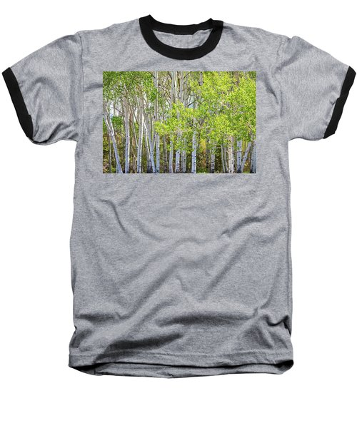 Getting Lost In The Wilderness Baseball T-Shirt by James BO Insogna