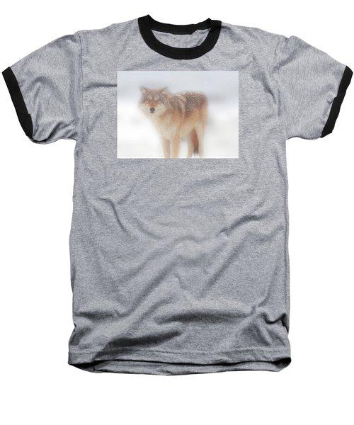 Ghost Wolf Baseball T-Shirt by Greg Slocum