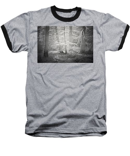 Baseball T-Shirt featuring the photograph Ghosts Of The Forest 3 by Tara Turner