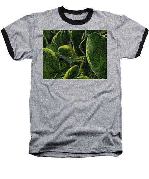 Giant Hosta Closeup Baseball T-Shirt