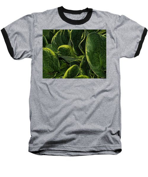 Giant Hosta Closeup Baseball T-Shirt