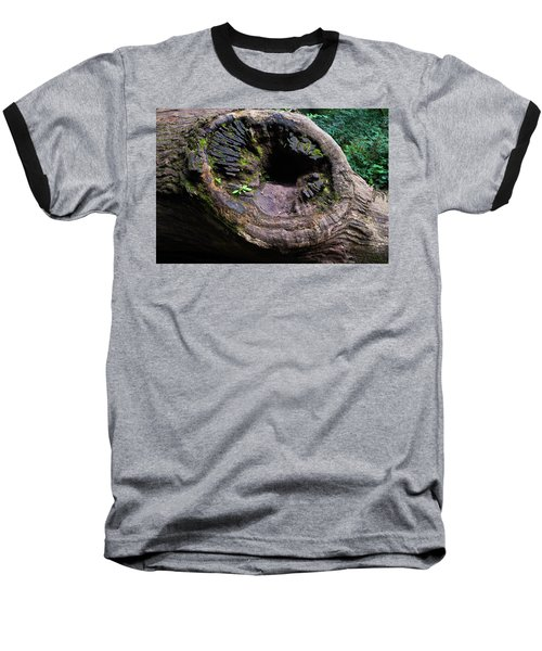 Giant Knot In Tree Baseball T-Shirt by Scott Lyons