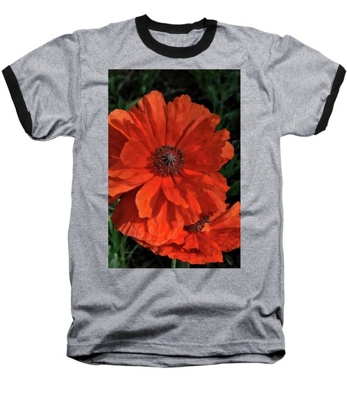 Giant Mountain Poppy Baseball T-Shirt