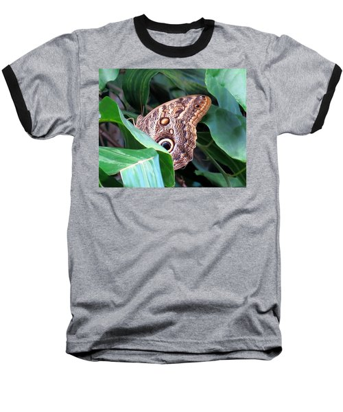 Giant Owl Butterfly Baseball T-Shirt by Betty Buller Whitehead