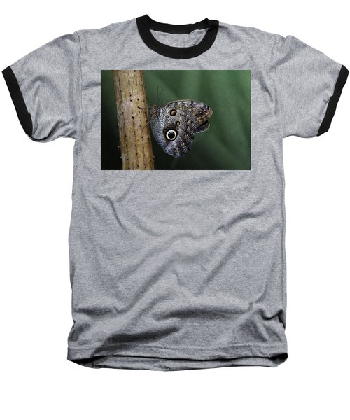 Giant Owl Butterfly On Screw Pine Baseball T-Shirt