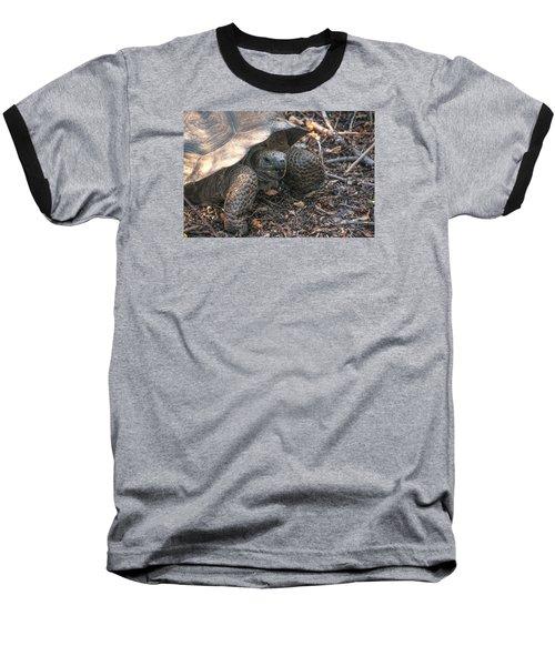 Giant Tortoise At Urbina Bay On Isabela Island  Galapagos Islands Baseball T-Shirt
