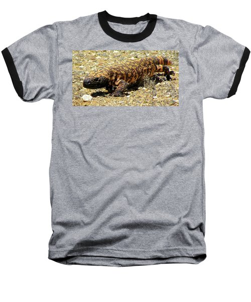 Gila Monster On The Prowl Baseball T-Shirt by Brenda Pressnall