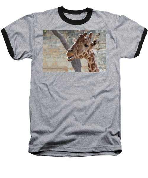 Girafe Head About To Grab Food Baseball T-Shirt