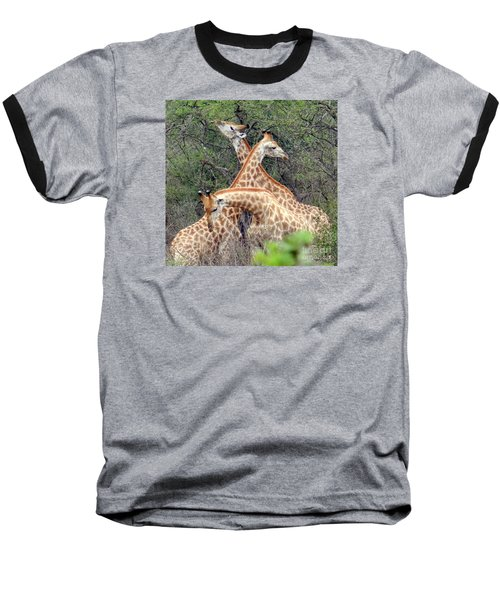 Giraffe Flirting Baseball T-Shirt