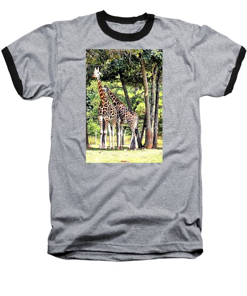 Giraffe Baseball T-Shirt by James Potts
