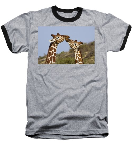 Giraffe Kisses Baseball T-Shirt