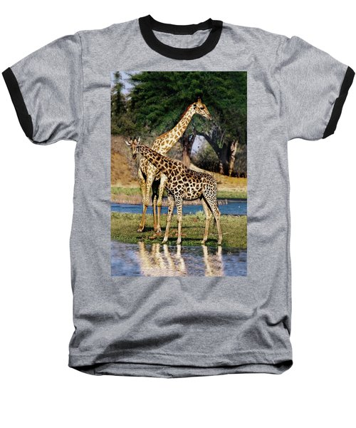 Giraffe Mother And Calf Baseball T-Shirt