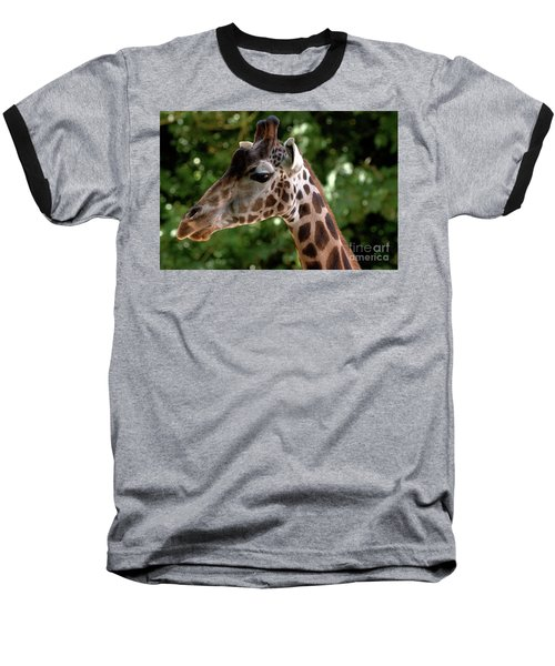 Giraffe Portrait Baseball T-Shirt