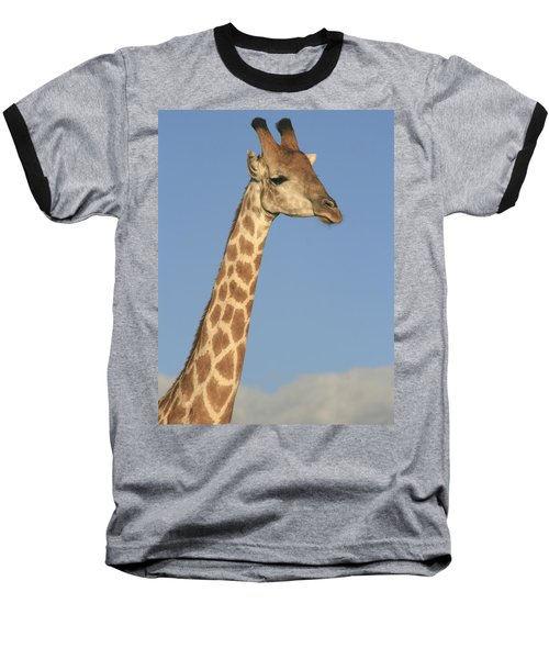 Giraffe Portrait Baseball T-Shirt