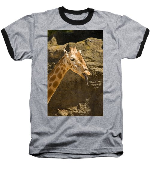 Giraffe Raspberry Baseball T-Shirt