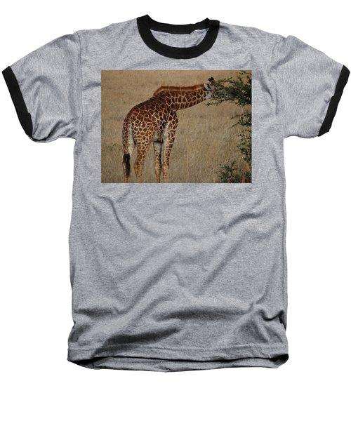 Giraffes Eating - Side View Baseball T-Shirt by Exploramum Exploramum