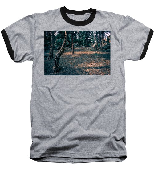Glade In The Forest Of Colorado Baseball T-Shirt by John Brink