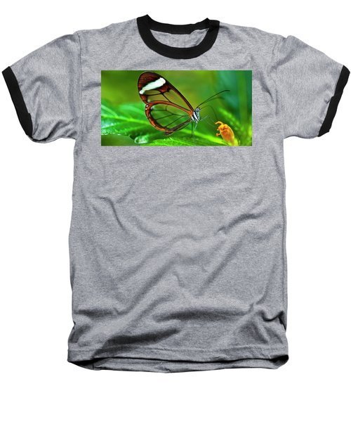 Baseball T-Shirt featuring the photograph Glasswinged Butterfly by Ralph A Ledergerber