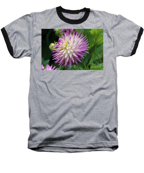 Glenbank Twinkle Dahlia 1 Baseball T-Shirt