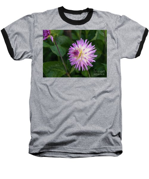Glenbank Twinkle Dahlia 3 Baseball T-Shirt
