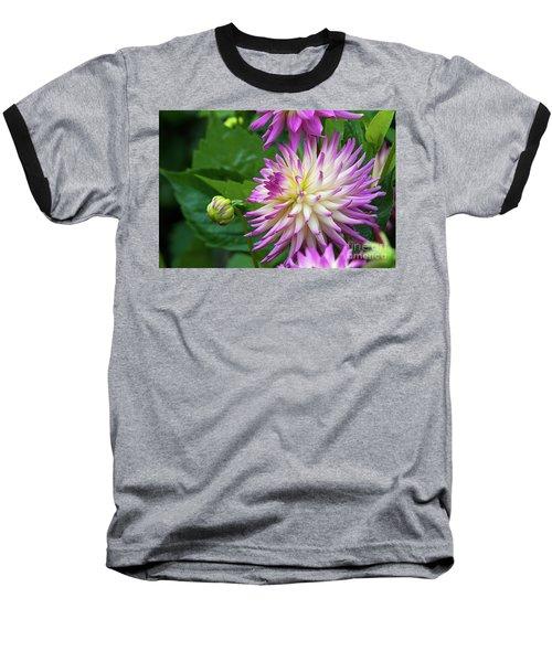 Glenbank Twinkle Dahlia Baseball T-Shirt by Glenn Franco Simmons