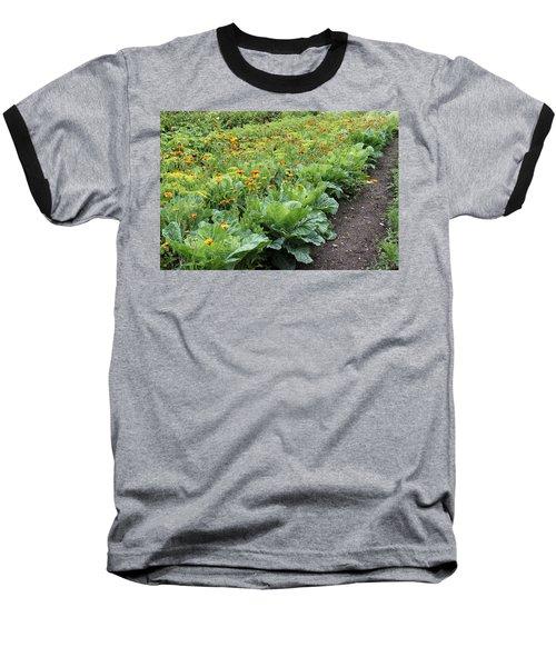Glenveagh Castle Gardens 4276 Baseball T-Shirt