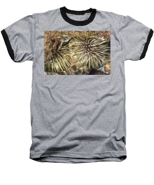 Baseball T-Shirt featuring the photograph Glistening by Colleen Coccia