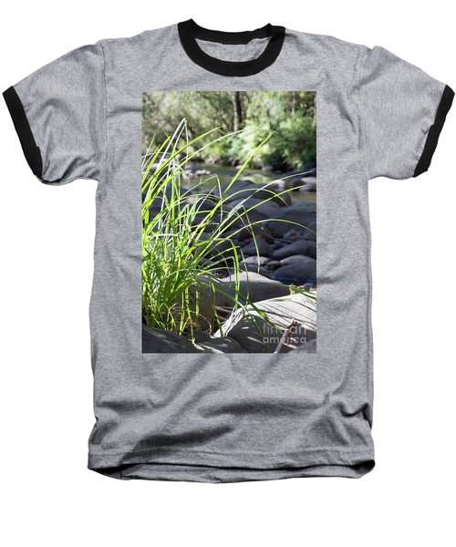 Baseball T-Shirt featuring the photograph Glistening In The Sunlight by Linda Lees